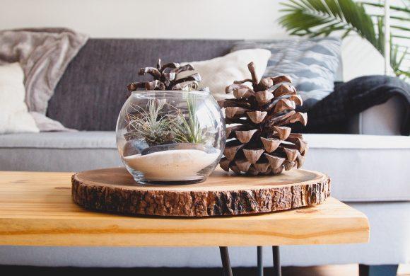 Preparar tu casa para la llegada del invierno                                                                                                                                                                                                          Consigue un espacio limpio y acogedor en los meses más fríos